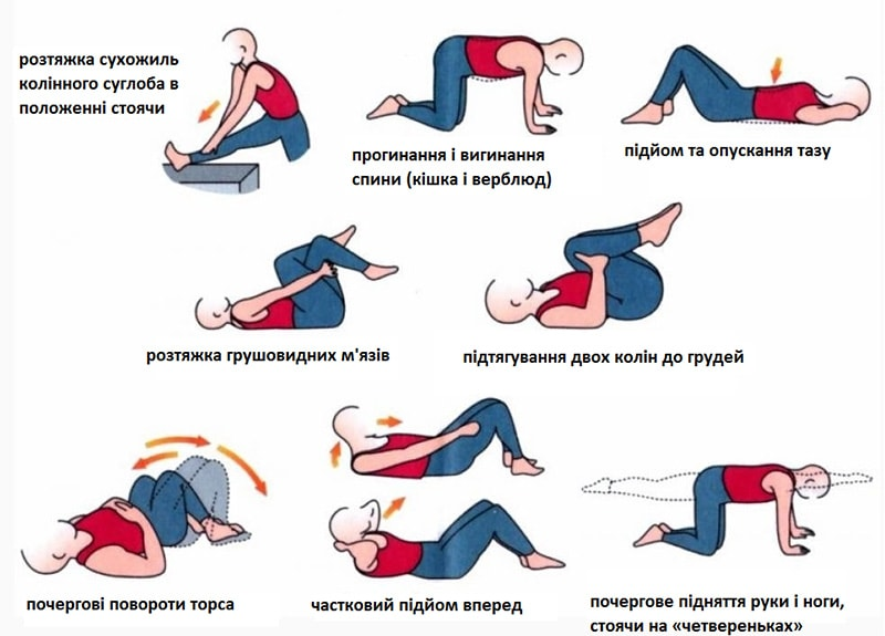 Лечебная гимнастика для позвоночника в домашних условиях